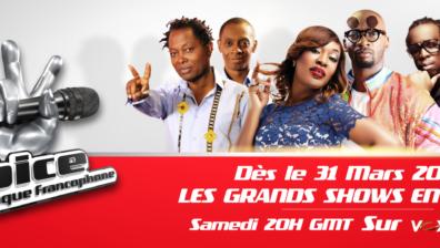 THE VOICE AFRIQUE FRANCOPHONE SAISON 2 :