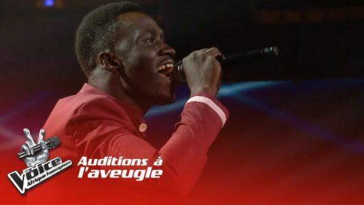 The Voice Afrique Francophone